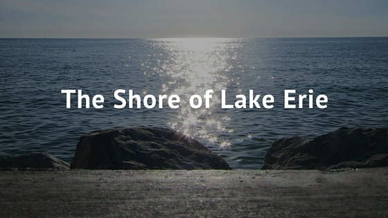 The Shore of Lake Erie